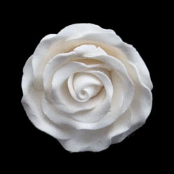 Fancy Gum Paste Rose-Large-White (No Wire)